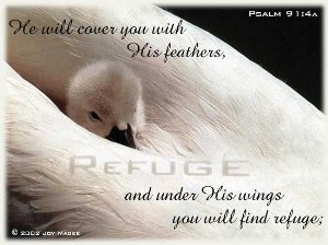 Psalm 91- A Prayer for fear